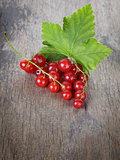 redcurrant branch on old wooden table