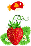 Bird on Strawberry