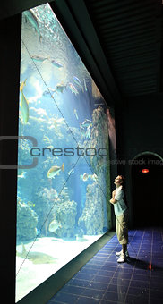 Man near aquarium with fish in Oceanographic Museum Monaco