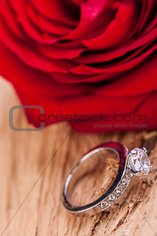 beautiful ring on wooden background and red rose