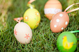 colored easter eggs group in green grass outdoor in spring