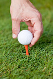 golf ball and iron on green grass detail macro summer outdoor