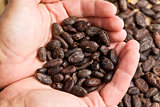handful of cacao beans