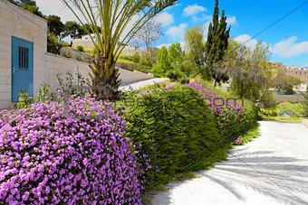 Mediterranean Spring