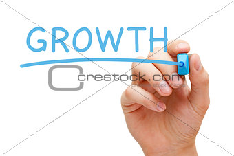 Growth Blue Marker