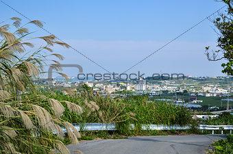 Okinawan landscape