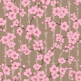 seamless cherry, sakura blossom flowers