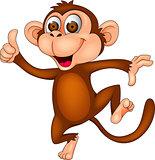 Funny dancing monkey
