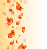 Flying autumn orange leaves background