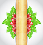 Eco friendly background with green leaves, flower, wooden textur