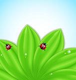 Green leaves ecology fresh background