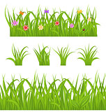 Set green grass isolated on white background