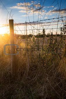 Beautiful Summer landscape of sun backlighting field in countrys