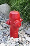 Fire hydrant in garden