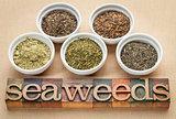 seaweeds - diet supplements