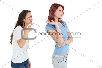 Angry young female friends having an argument