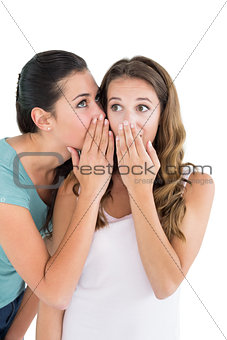 Two young female friends gossiping
