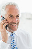 Smiling mature businessman using mobile phone