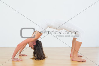 Toned woman doing the wheel pose in fitness studio