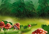 Fly Agarics Mushrooms