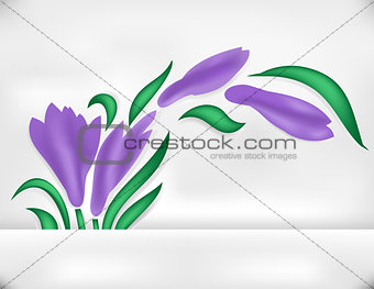 Abstract iris with banner