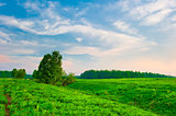 bright sky at sunrise on a green hilly meadow