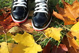 Autumn background- boots and leaves