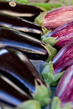 fresh violet eggplant in summer outdoor on market
