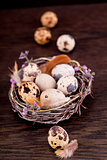 easter decoration with quail eggs on wood