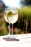 hugo prosecco elderflower soda ice summer drink