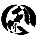 rearing up horse  vector silhouette
