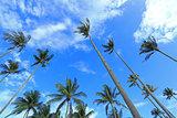 the sky of bintan island