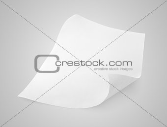 Blank sheet of white paper on gray