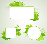 Green ecology  banners