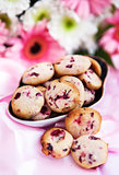 Homemade cranberry cookies