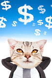 businessman and cat head thinking money