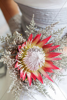 Bride holding her beautiful protea flower bouquet