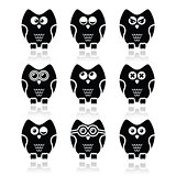 Owl cartoon character vector icons set