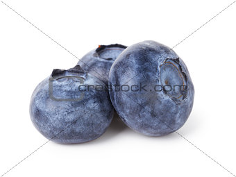 three fresh blueberries
