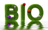 Bio grass