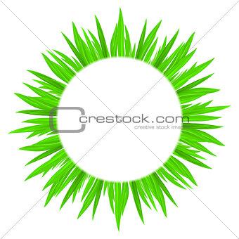 Circle of grass.