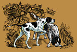 hunting dogs in forest illustration