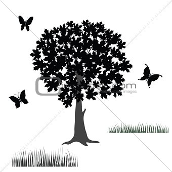 tree and butterflies
