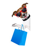 shopaholic shopping dog