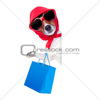 shopaholic shopping diva dog