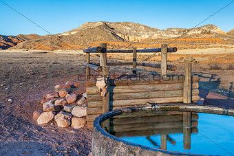 cattle watering hole in Colorado mountains