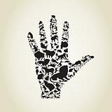 Hand an animal