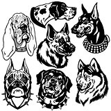 black and white set with dogs heads