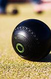 Lawn Bowls Ball