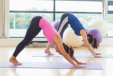 Two fit women doing the Downward Facing Dog pose